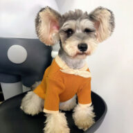 Dog Sweater Bowknot Plain Knit Sweater Cute Cat Winter Clothing Pet Clothes Pet Accessories Dog Clothes: Shirts, Sweaters & Jackets Apparel