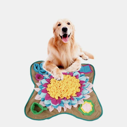 Newest Design Puzzle Relieve Stress Slow Food Smell Training Blanket Nose Pad Silicone Pet Feeding Mat 06-1271 Dog Bag & Mat: Pet Products, Dog Goods 06-1271