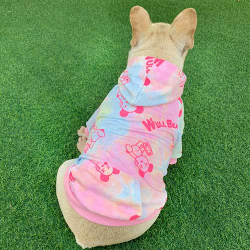 Wholesale Spring&Autumn New Cat Pet Hooded Tie-dye Sweater Korean Dog Two-legged Clothes-06-0504
